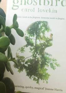 book1 - Copy (2)