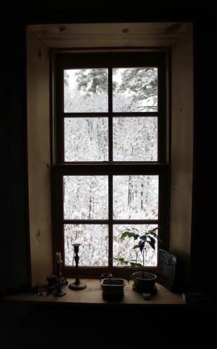 5 WINDOW.jpg