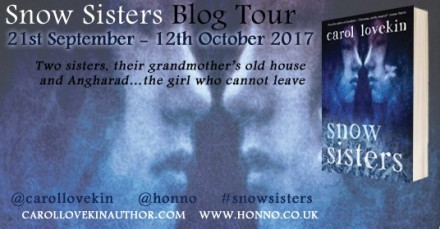 snow sisters blog tour poster (2) - Copy