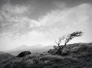 welsh-landscape_cc